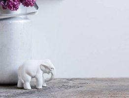 thème éléphant